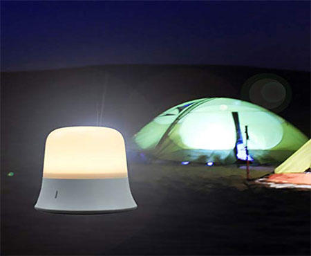 Portable LED Night