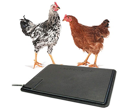 K&H chicken heated Thermo pad